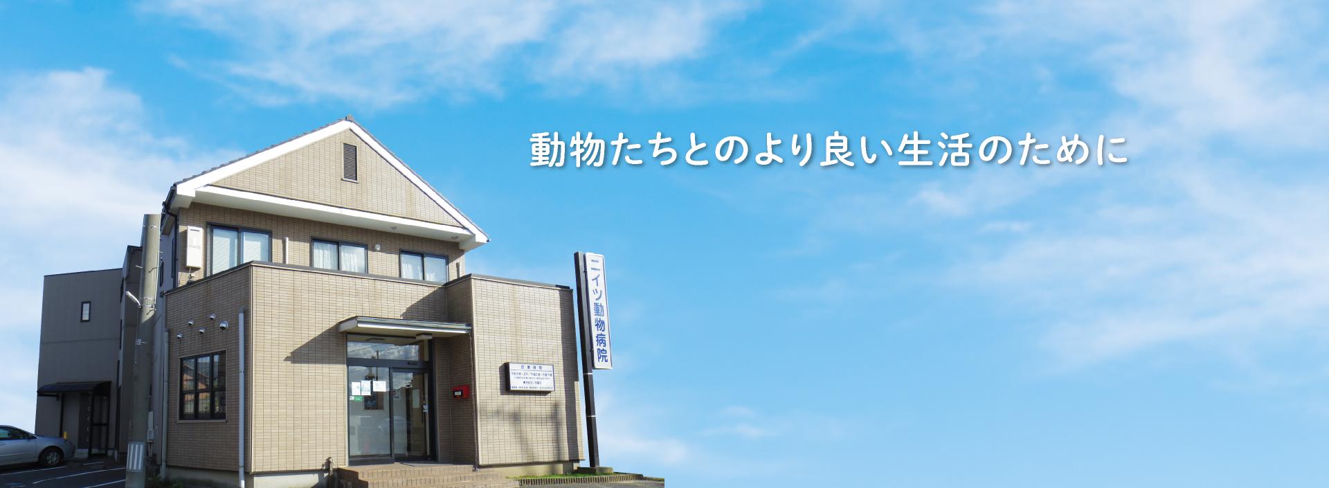 新潟市秋葉区ニイツ動物病院
