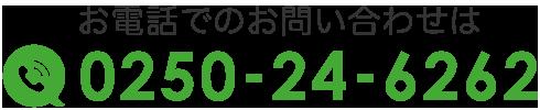 0250-24-6262